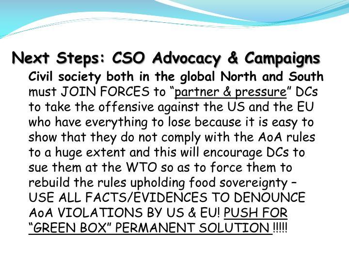 Next Steps: CSO Advocacy & Campaigns