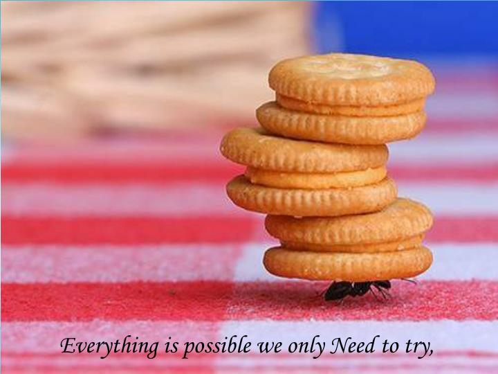Everything is possible we only Need to try,