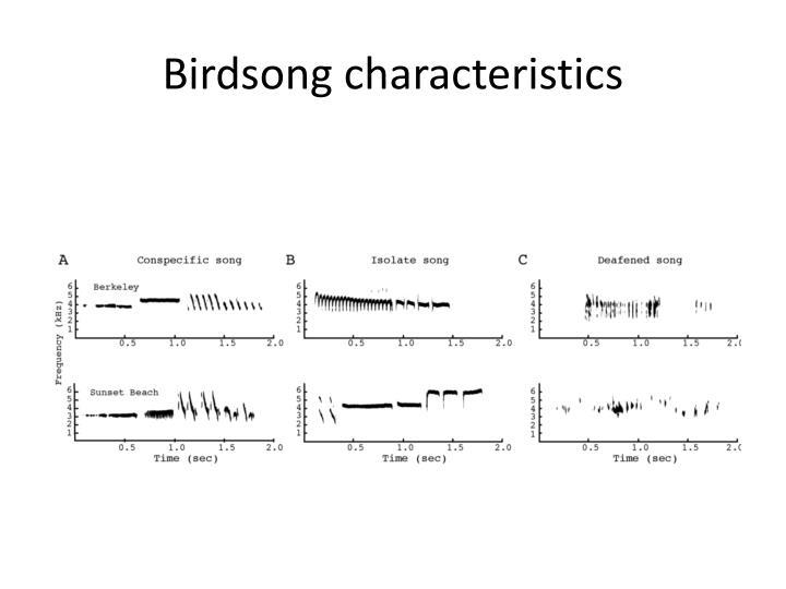 Birdsong characteristics