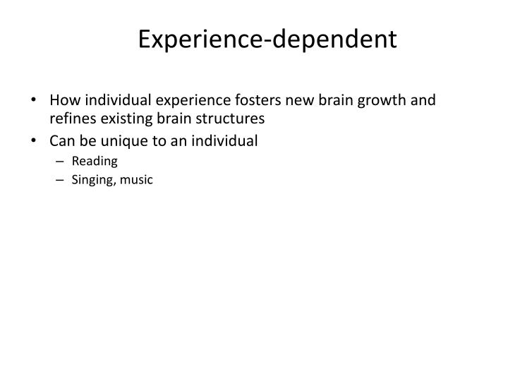 Experience-dependent