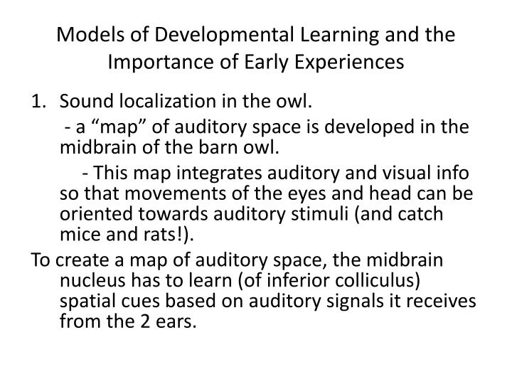 Models of Developmental Learning and the Importance of Early Experiences