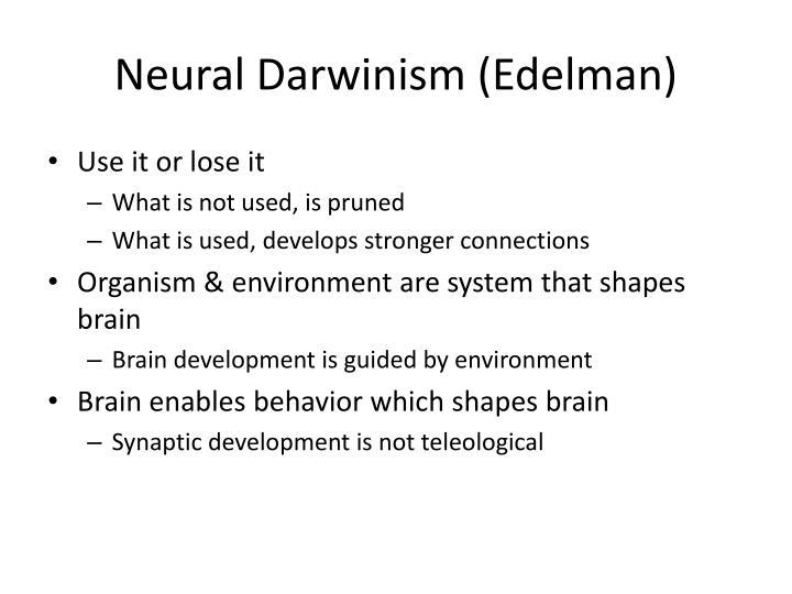 Neural Darwinism (Edelman)