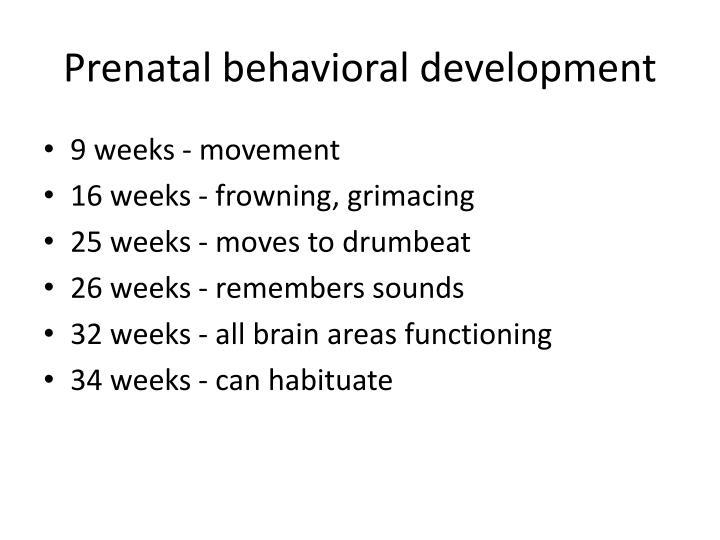 Prenatal behavioral development