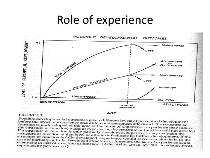 Role of experience