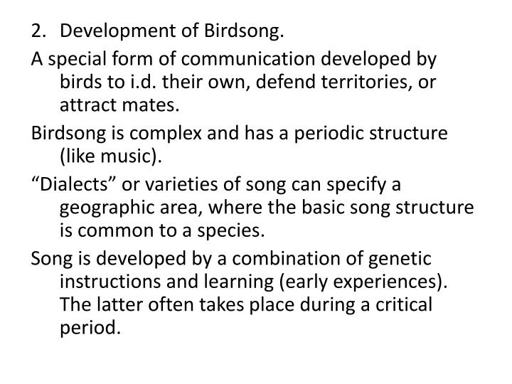 Development of Birdsong.