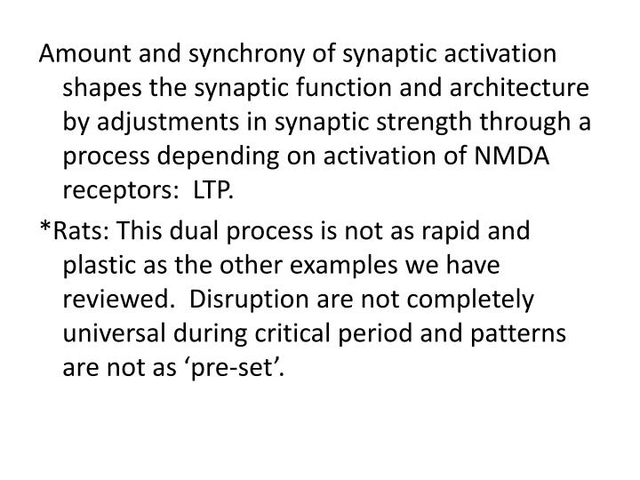 Amount and synchrony of synaptic activation shapes the synaptic function and architecture by adjustments in synaptic strength through a process depending on activation of NMDA receptors:  LTP.