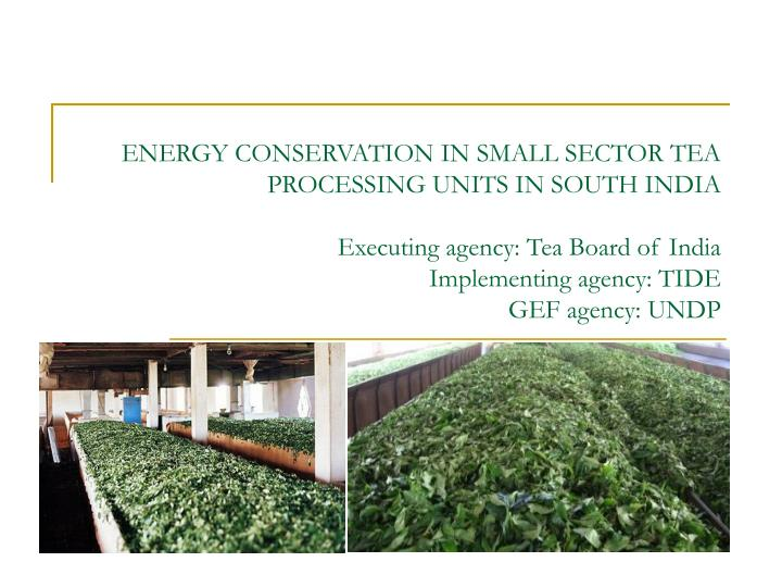 ENERGY CONSERVATION IN SMALL SECTOR TEA PROCESSING UNITS IN SOUTH INDIA