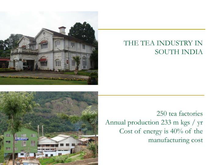 THE TEA INDUSTRY IN SOUTH INDIA