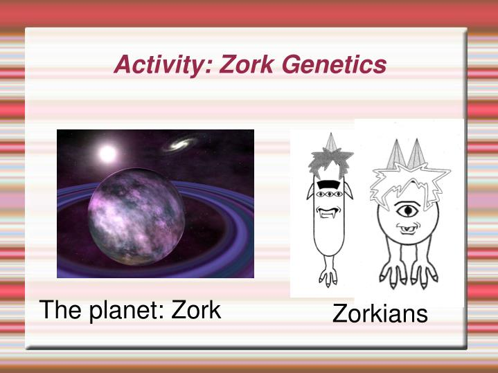 Activity: Zork Genetics