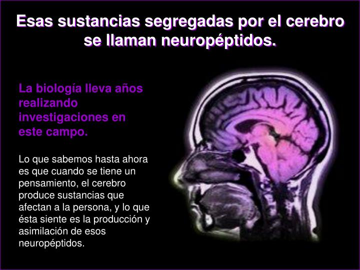 Esas sustancias segregadas por el cerebro se llaman neuropéptidos.