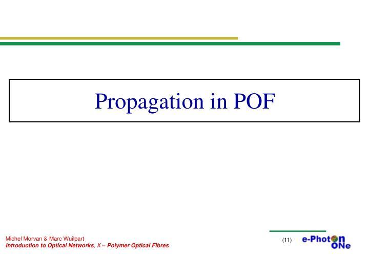 Propagation in POF