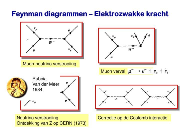 Muon-neutrino verstrooiing