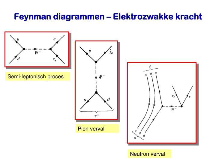 Semi-leptonisch proces