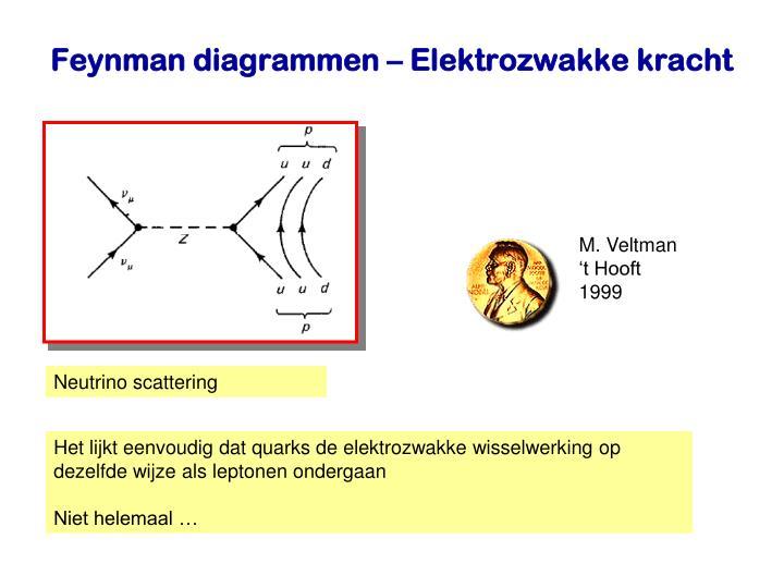 M. Veltman
