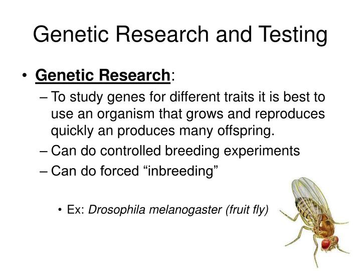 Genetic Research and Testing
