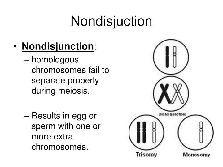 Nondisjuction