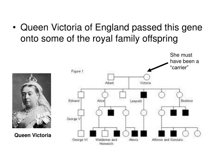 Queen Victoria of England passed this gene onto some of the royal family offspring