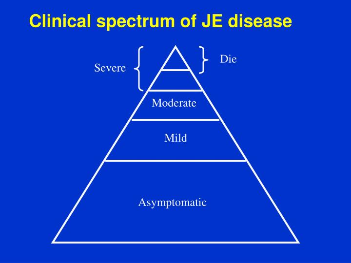 Clinical spectrum of JE disease