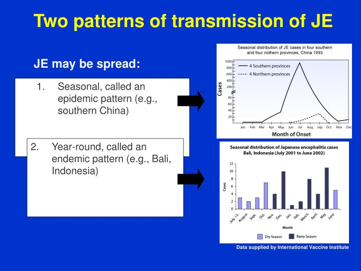 Two patterns of transmission of JE