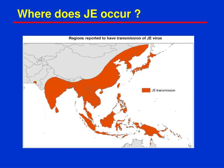 Where does JE occur ?