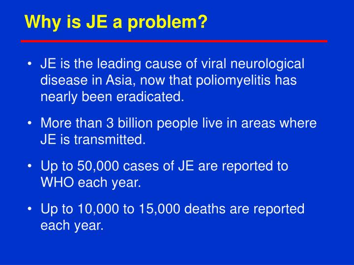 Why is JE a problem?