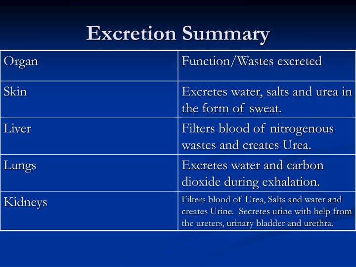 Excretion Summary