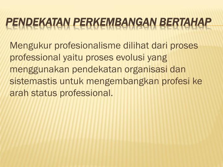 Mengukur profesionalisme dilihat dari