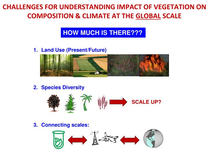 CHALLENGES FOR UNDERSTANDING IMPACT OF VEGETATION ON COMPOSITION & CLIMATE AT THE
