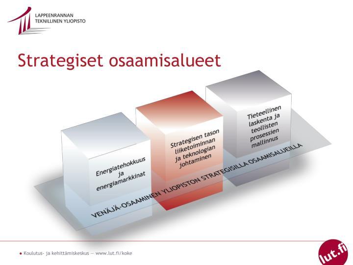 Strategiset osaamisalueet