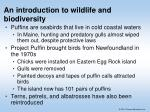 an introduction to wildlife and biodiversity
