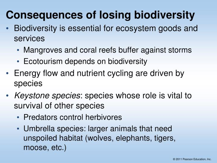 Consequences of losing biodiversity
