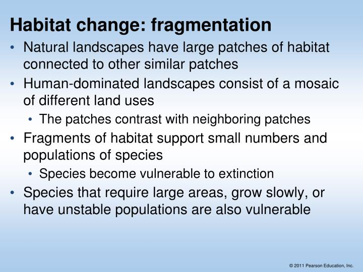 Habitat change: fragmentation
