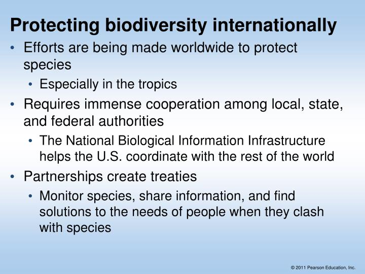 Protecting biodiversity internationally