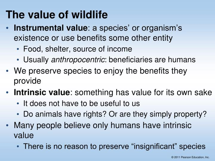 The value of wildlife