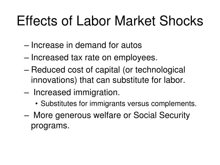Effects of Labor Market Shocks