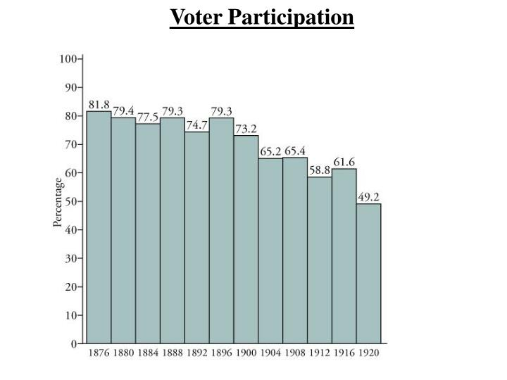 Voter Participation