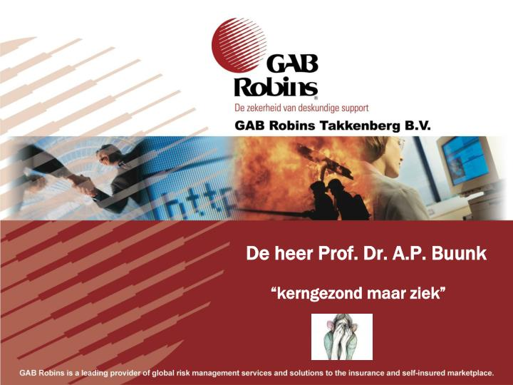 De heer Prof. Dr. A.P. Buunk