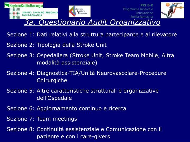 3a. Questionario Audit Organizzativo