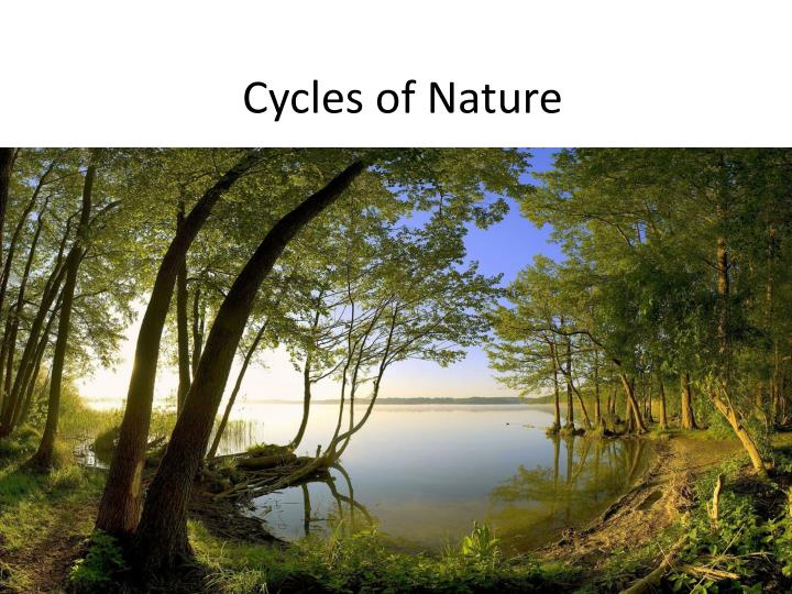 Cycles of Nature
