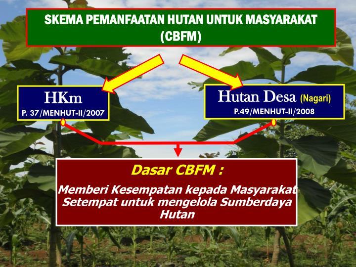 SKEMA PEMANFAATAN HUTAN UNTUK MASYARAKAT (CBFM)
