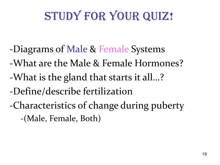 STUDY for your QUIZ!