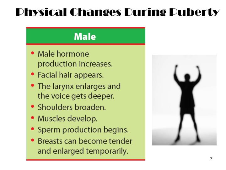 Physical Changes During Puberty