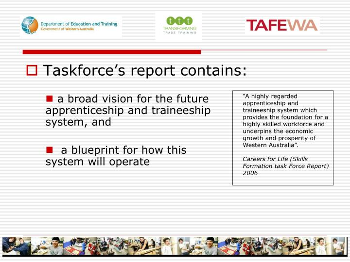 Taskforce's report contains: