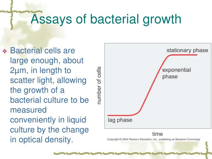 Assays of bacterial growth
