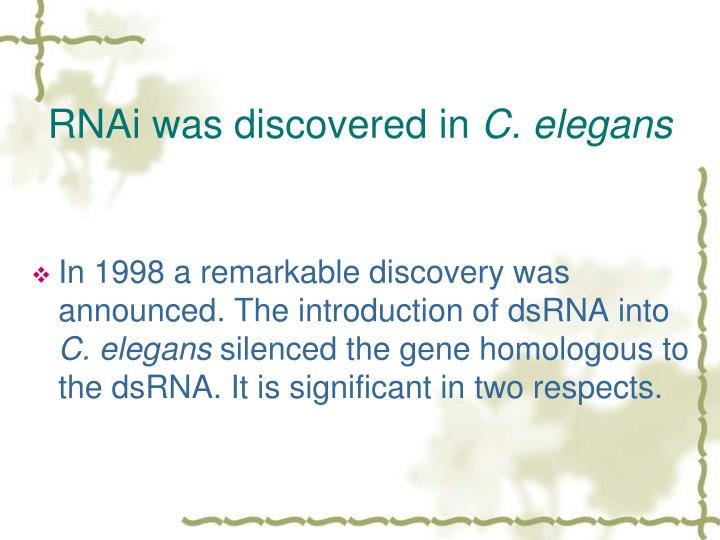 RNAi was discovered in