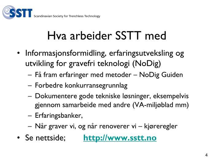Hva arbeider SSTT med