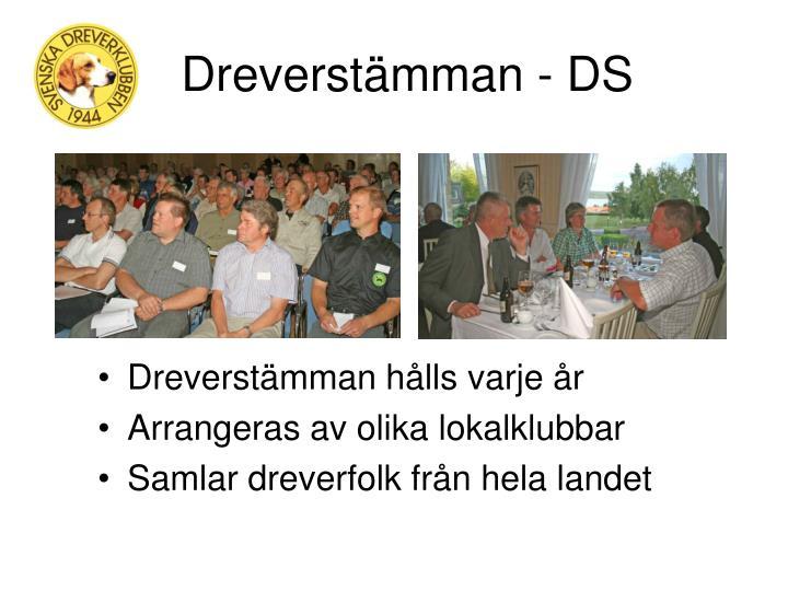 Dreverstämman - DS