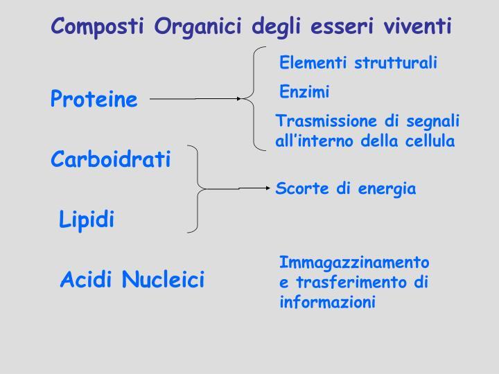 Composti Organici degli esseri viventi