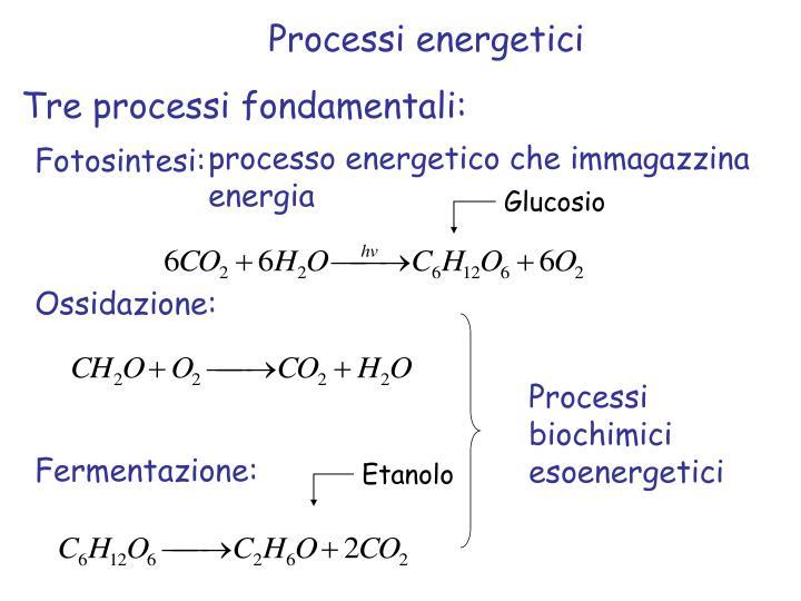 Processi energetici