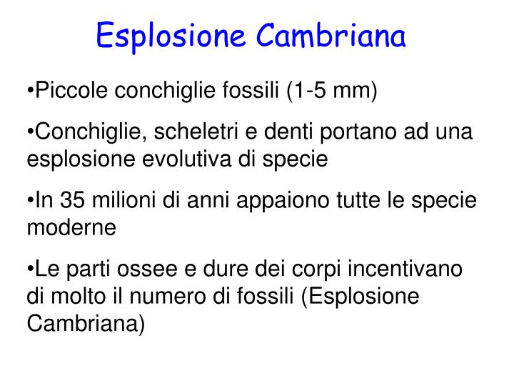 Esplosione Cambriana